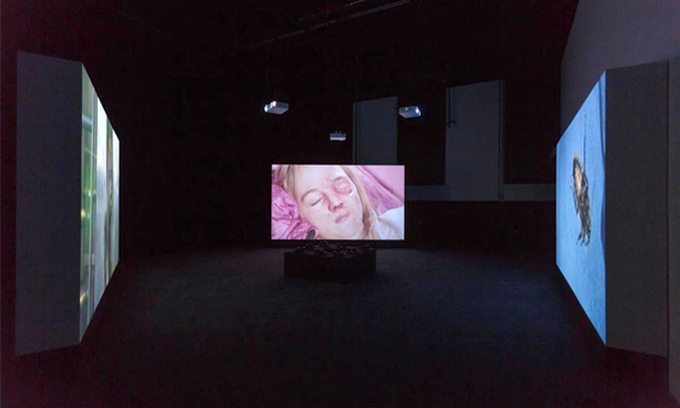 Marianna Simnett's video triptych Blood (2015). Photograph courtesy Zabludowicz Collection, © Tim Bowditch