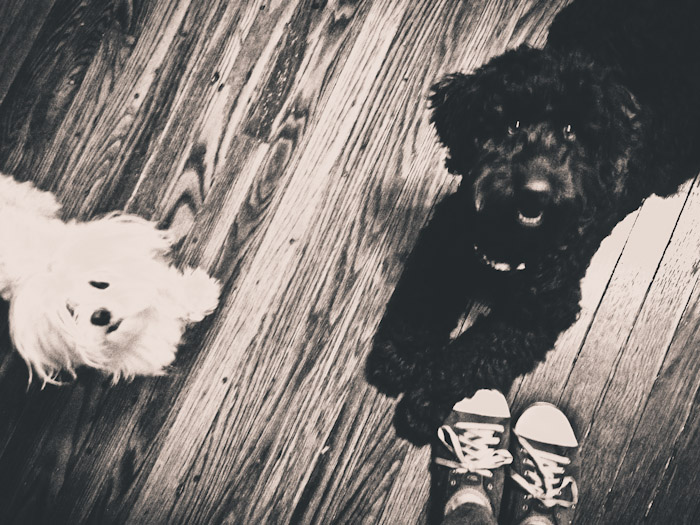 Riley and Ella