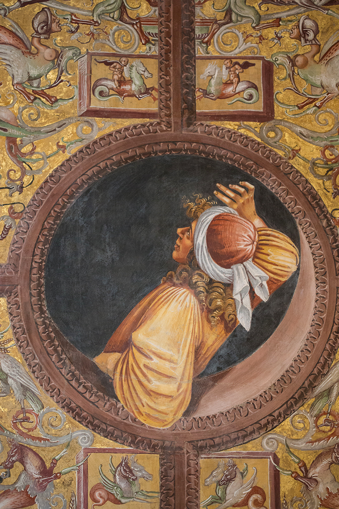 Spectator looks up at Signorelli's frescoes