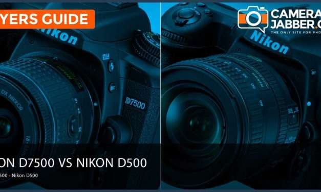 Nikon D7500 vs Nikon D500: Key Differences