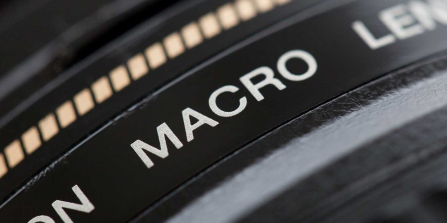Macro lenses explained: how to buy with confidence