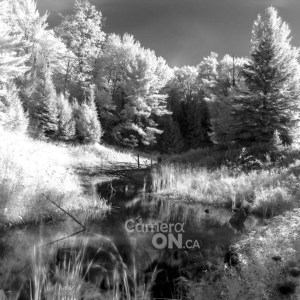 infrared photography tutorial example 2