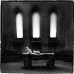 Keith Carter Photograph 2