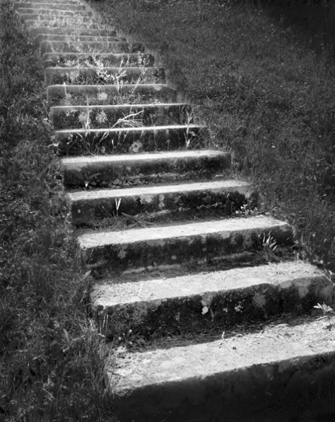 Stairs, Toscana, 2009 - Photograph by Jeff Curto