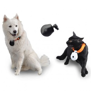 camera-embarquee-collier-espion-pour-chien-chat