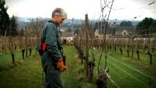 John communes with a Clos Electrique vine. Photo by Jeremy Fenske.