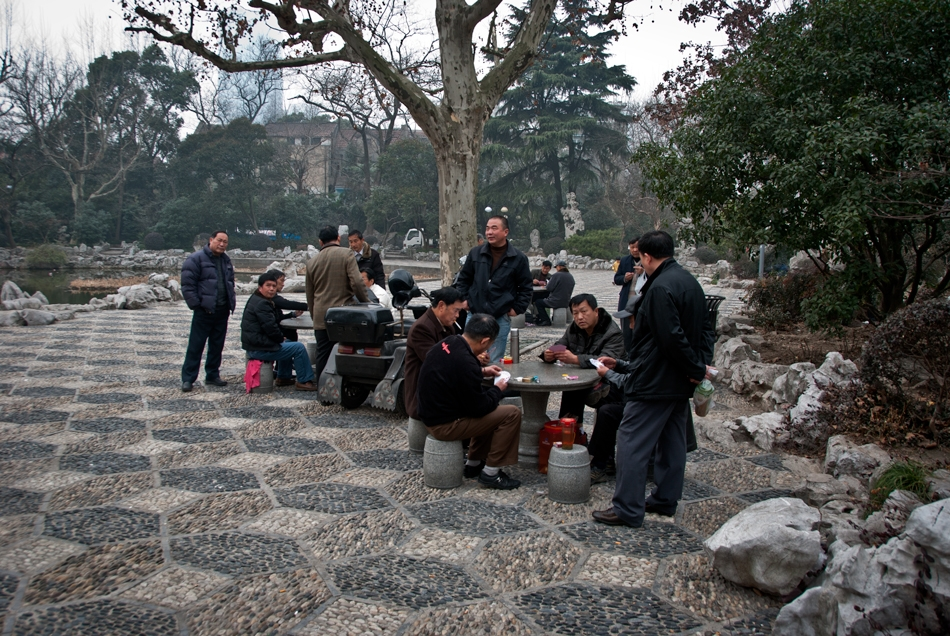 Card players in Fuxing Park, French Concession, Shanghai