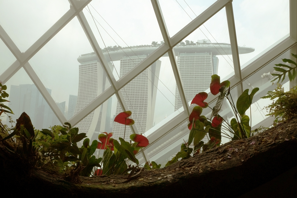 View over the Marina Bay Sands from the Gardens