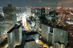 view from Park Hyatt Tokyo