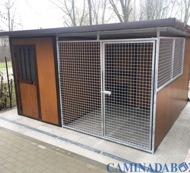 strutture box per cani