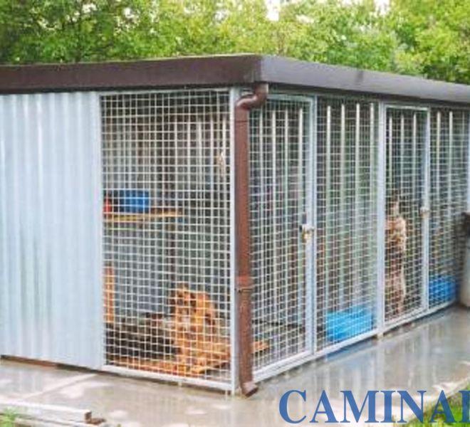 box per canili