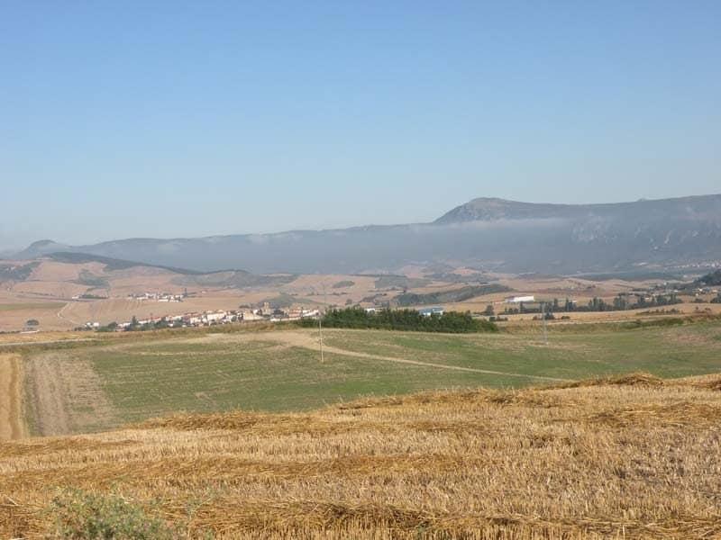 Cizur Minor - Cirauqui 04 countryside 04