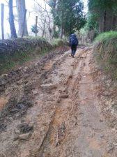 muddy-track