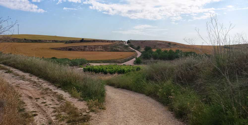 Camino dry weather