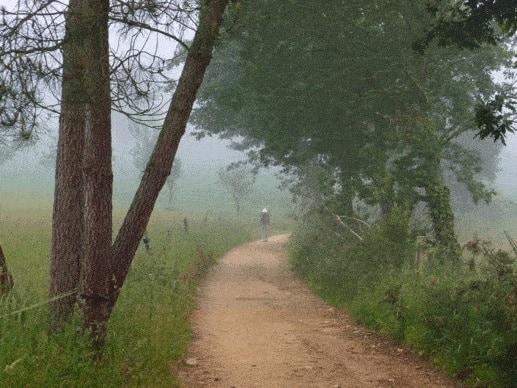 Camino route
