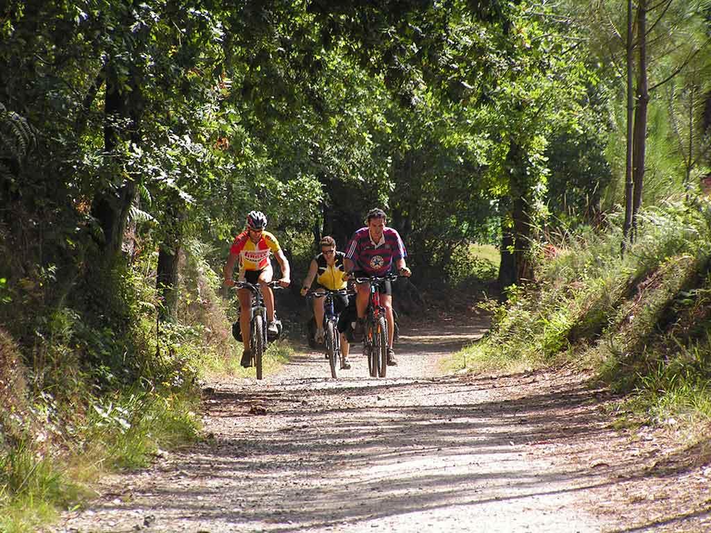 ruta en bici