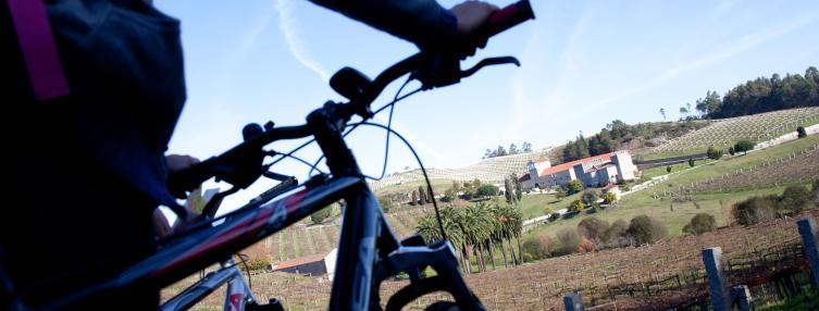 Vistas de Pazo Baion desde tu bicicleta