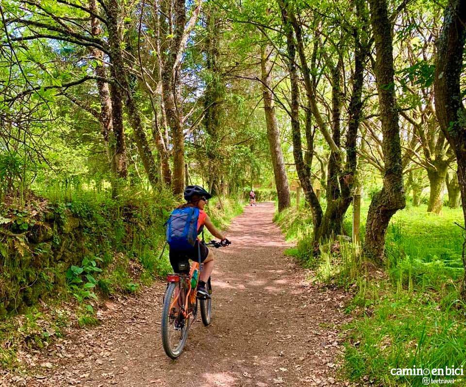 Camino Francés en Galicia