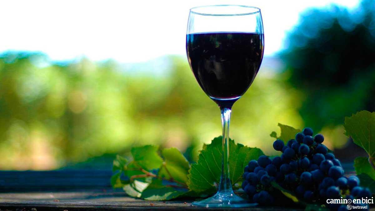 Camino Fracés - Denominación de Origen Rioja