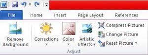 Quitar el fondo de una imagen con Microsoft Word-4