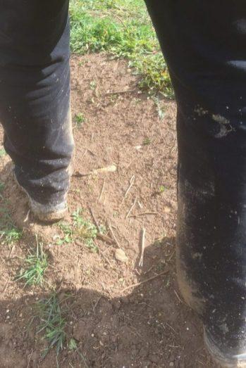 Ole's bukser på 1. hele vandringsdag
