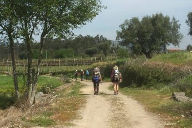 Flere pilgrimme på vejen - de 2 sidste er 2 hollandske kvinder, vi snakkede ofte med