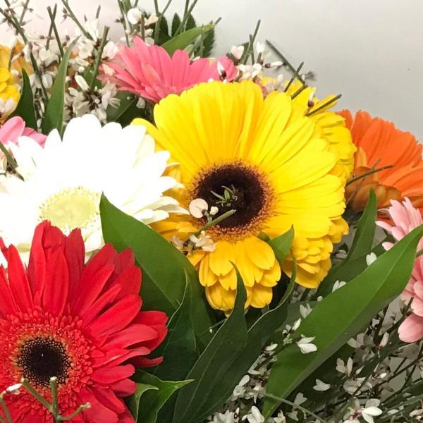fiori a chiaia