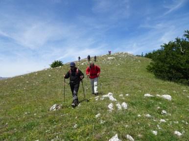 ACER Monte Cabbia DSC08836
