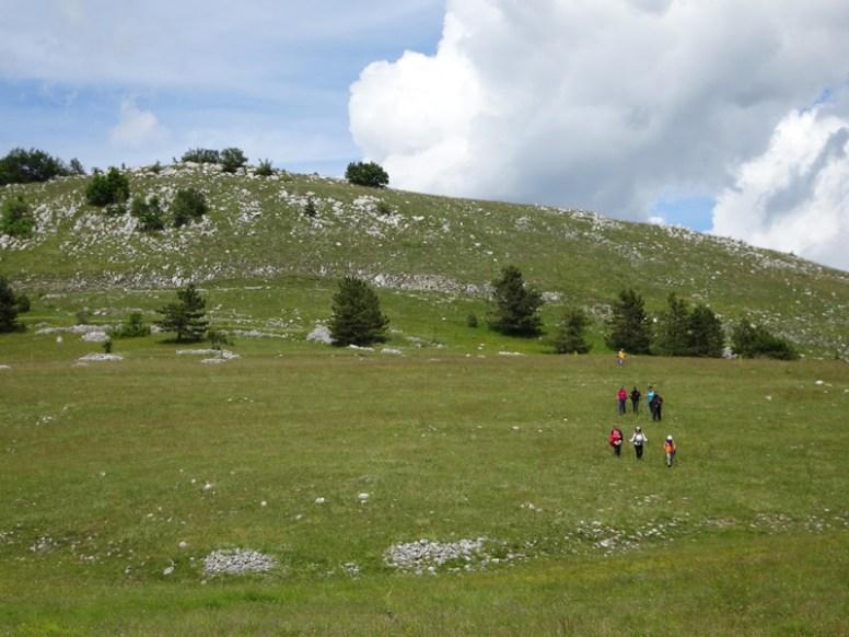 ACER Monte Cabbia DSC08840