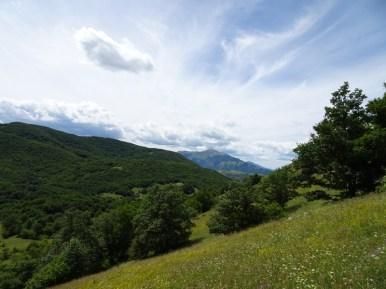 ACER Monte Cabbia DSC08845