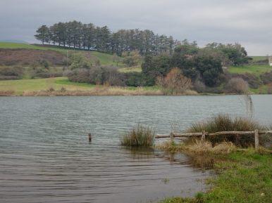 1-2019 lago Giulianello-3