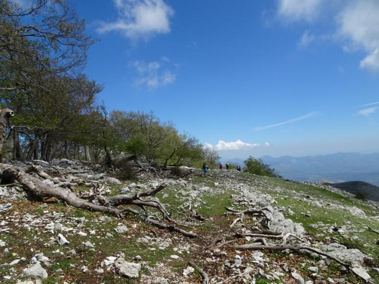 monte Semprevisa32