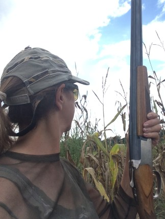 dove hunting photo