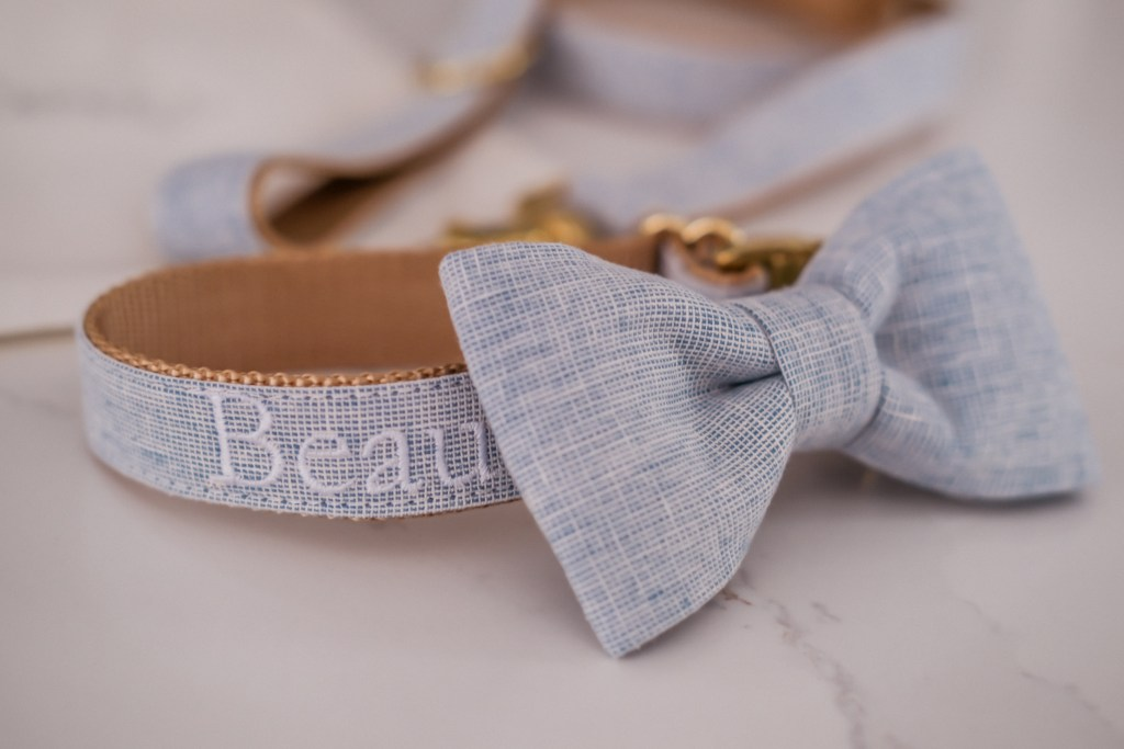 beautiful dog collar