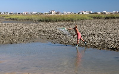 MURRELLS INLET WATERS… What's Lurking Beneath?