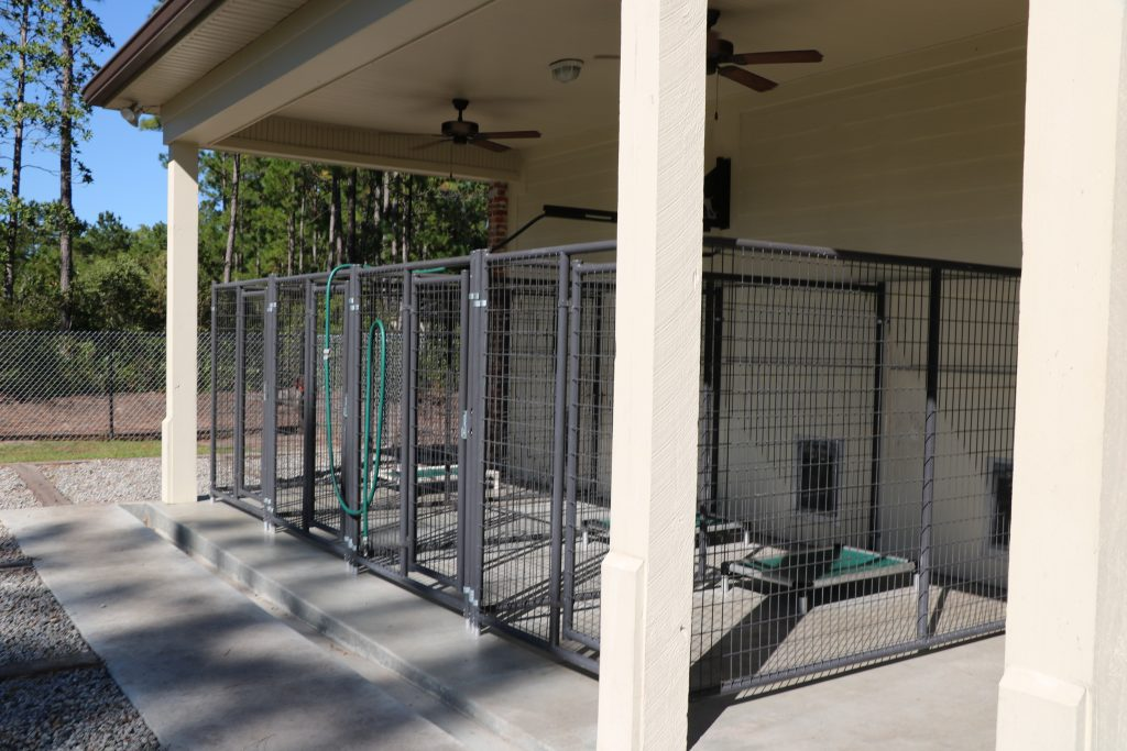 beautiful kennel facility for hunting dogs
