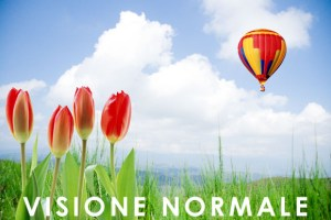 Visione normale (emmetropia)