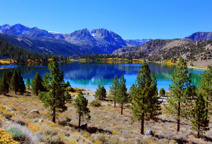 Fall Feather Wallpaper Mammoth Lakes Owens Valley