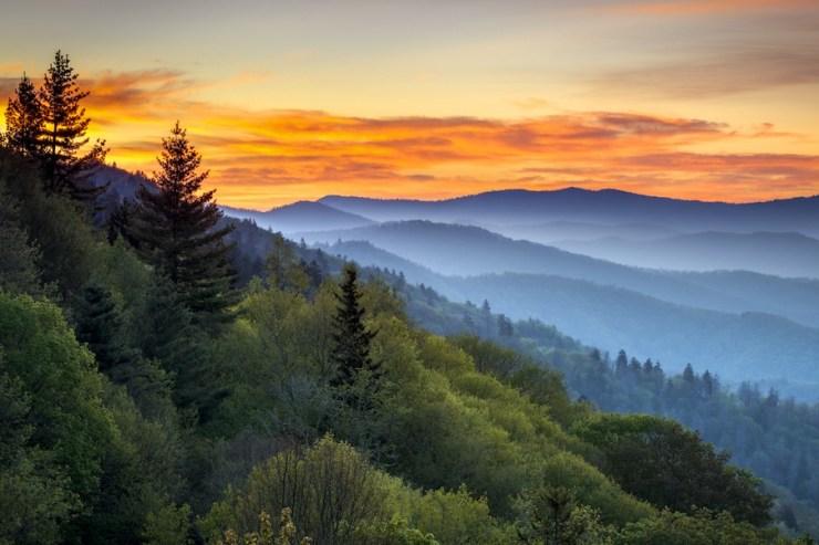 Pittoreske Landschaft im Great Smoky Mountains Nationalpark: Baumwipfel und Bergketten sind vor einem golden strahlenden Himmel zu sehen.