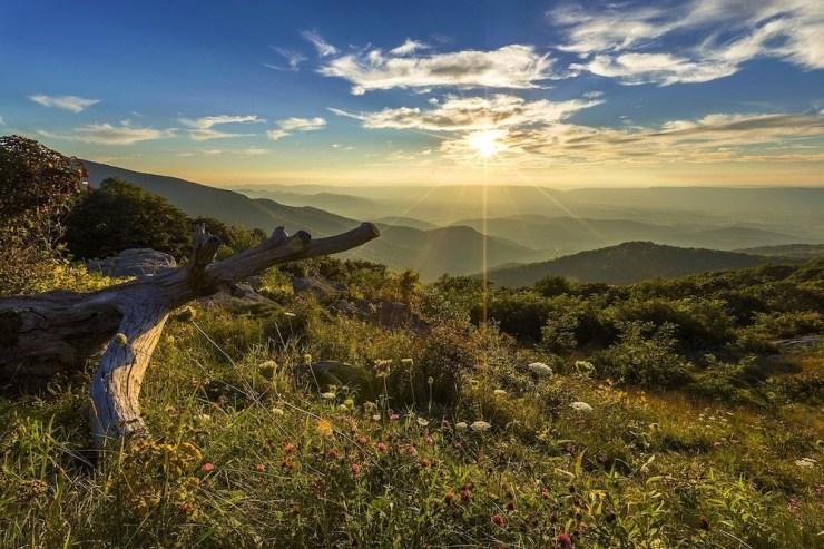 Malerische Hügellandschaft vor einem strahlenden Himmel im Shenandoah Nationalpark.