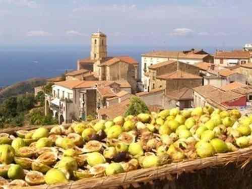 Dieta Mediterranea Pollica Cilento Centenari