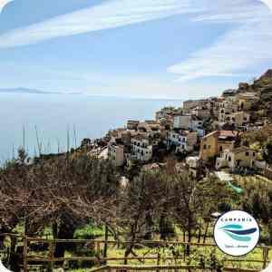 Le Vigne di Raito Costa d'Amalfi