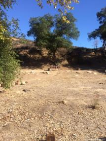 Dripping Springs Campground Temecula - Year of Clean Water