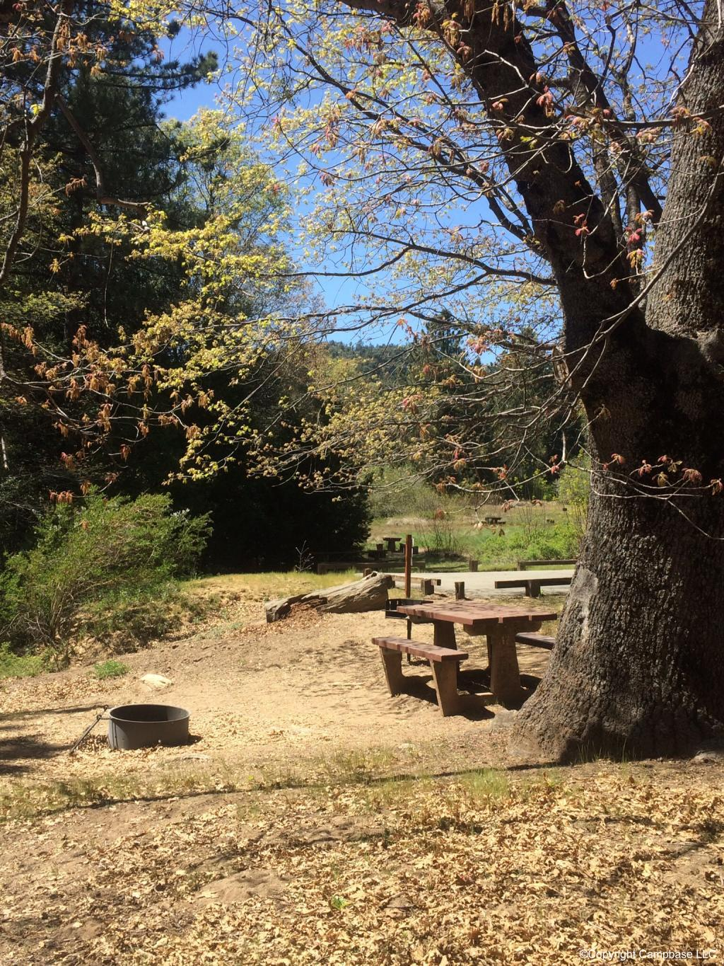 Observatory Campground Palomar Mountain California