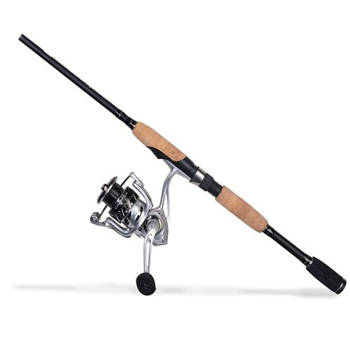 Cadence CC6 Spinning Combo