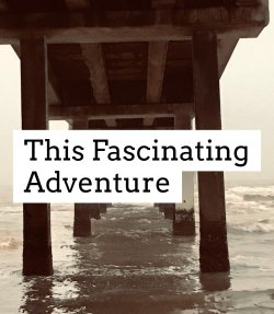This Fascinating Adventure