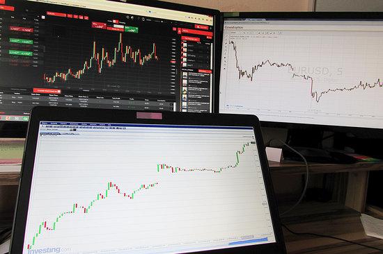 forex trading signals premium beginners whatsapp telegram