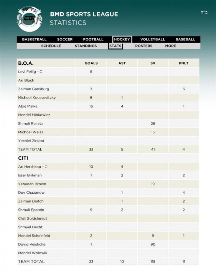 13Hockey 1BOA - 2CITI Stats 12 02 (Custom)