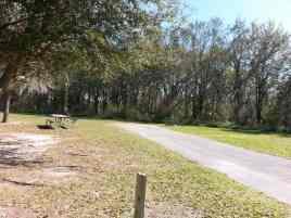 Alafia River State Park in Lithia Florida8