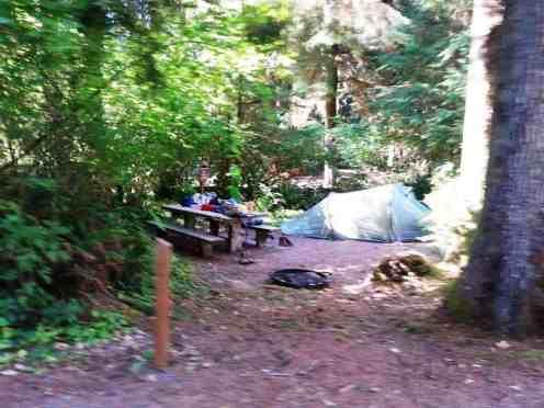 Bogachiel-State-Park-Campground-07